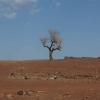 Burkina Faso paysage